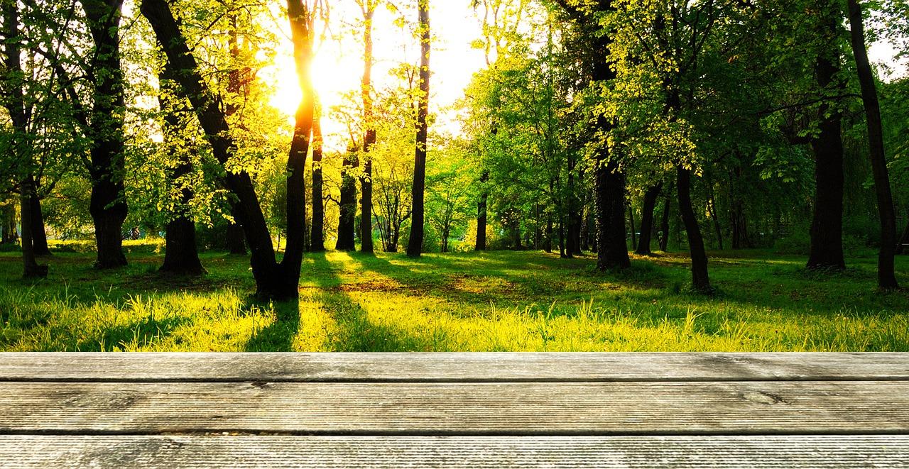 Prix et devis pose terrasse en bois